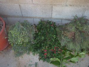 moltes herbes